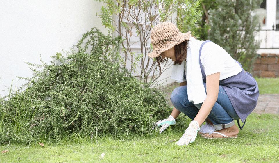 庭掃除などの個人へのお仕事依頼