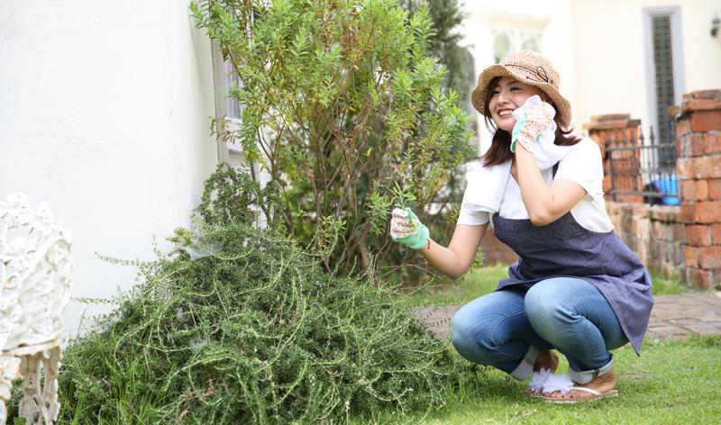 庭の掃除・草むしり