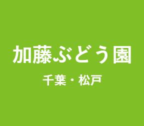 加藤ぶどう農園 ロゴ