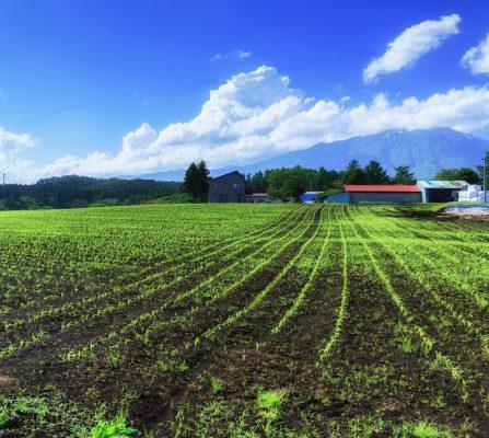 「「農作業のイメージ」について」のサムネイル