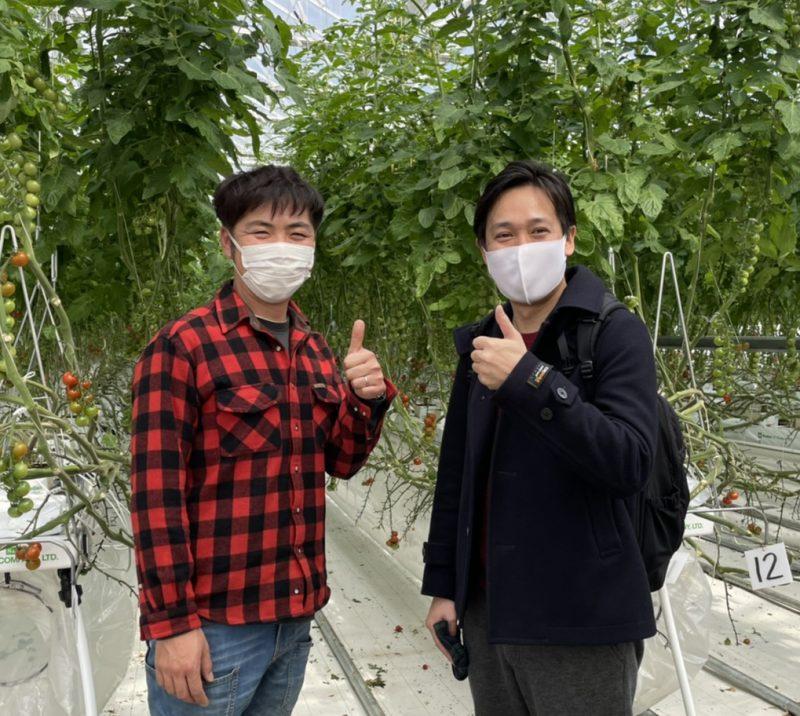 ファームトマト トップ